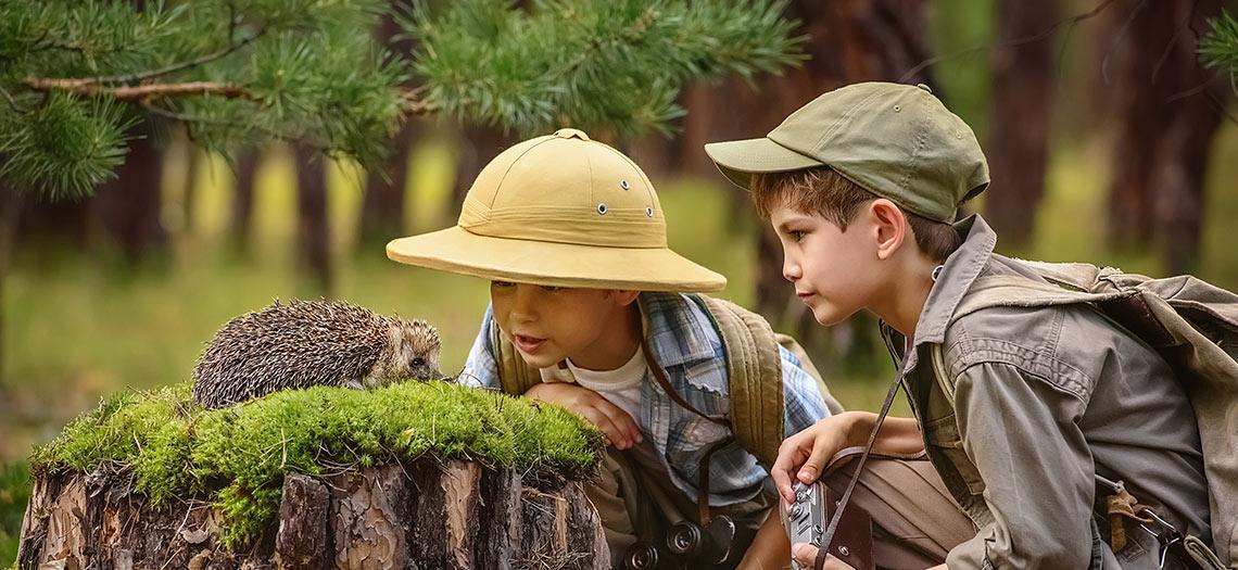 Fotosafari im Wald mit Kindern