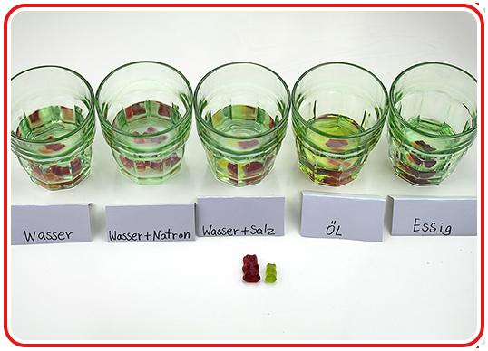 Step 4 - Gummibärchen-Experiment