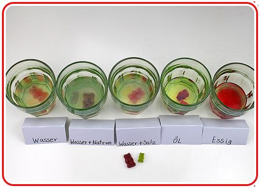 Step 5 - Gummibärchen-Experiment