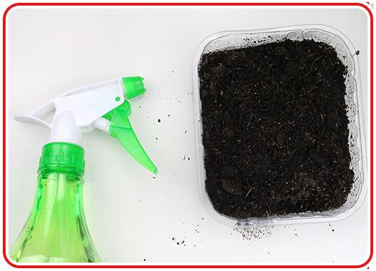 Step 2 - Indoor-Garten anlegen