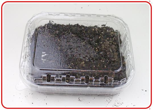 Step 3 - Indoor-Garten anlegen