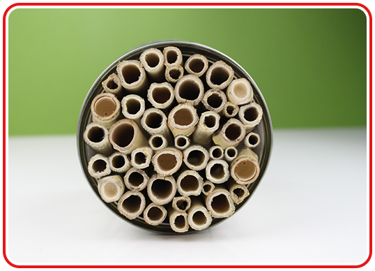 Insektenhotel aus Konservendose - Step 4