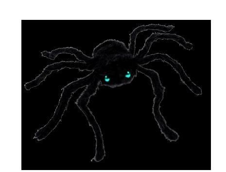 Diese Zutaten benötigst Du für ein gruseliges Spinnen-Kostüm