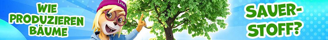 Bäume und Sauerstoff