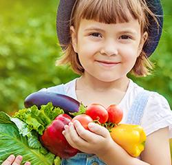 Obst- und Gemüse-ABC